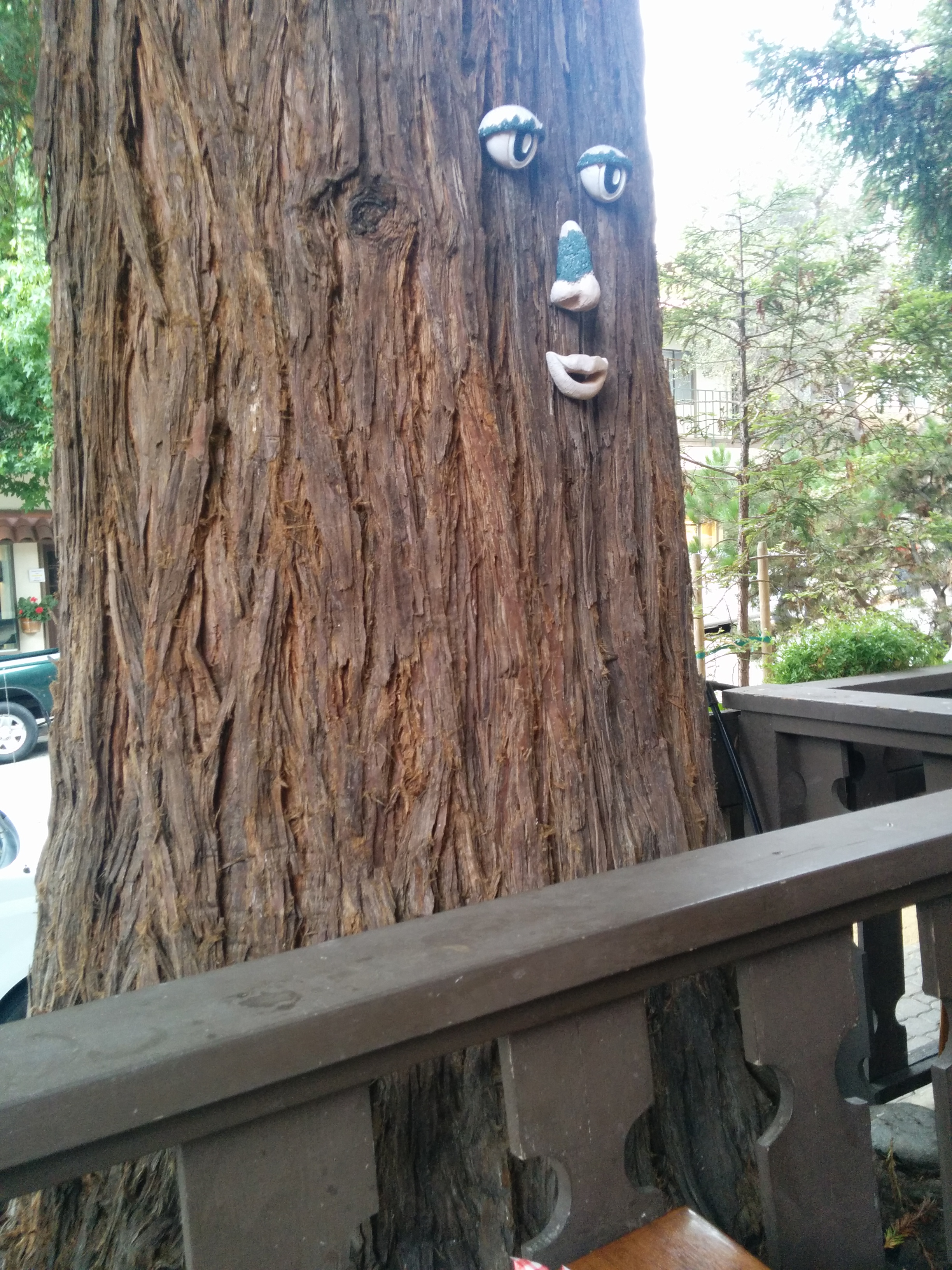 Tree with face